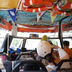 Duck & Hippo Tours User Photo