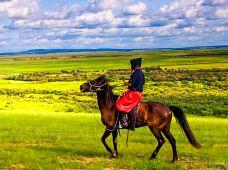 呼伦贝尔+海拉尔+额尔古纳+室韦+满洲里6日5晚跟团游·越野小团 无购物无自费+2次骑马+马之舞表演+探索边境+室韦骑行+2小时骑马穿越+草原精彩活动