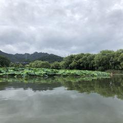 다위링 여행 사진