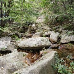 Yangzi Valley User Photo