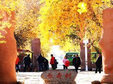 新疆喀什帕米尔高原+塔什库尔干+麦盖提+叶城7日6晚跟团游·走近南疆,刀郎之乡+昆仑第一城+帕米尔高原+塔克拉玛干达瓦昆沙漠,不走回头路,住宿升级