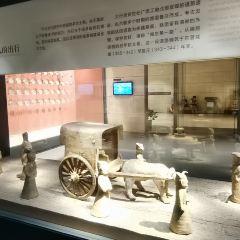 六朝博物館のユーザー投稿写真