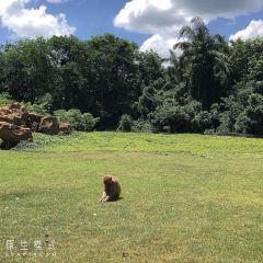 Hainan Tropical Wildlife Park User Photo