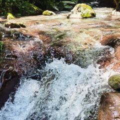 亞木溝風景區用戶圖片