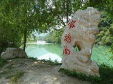 宕昌+官鹅沟+哈达铺会议旧址2日1晚跟团游·官鹅沟+哈达铺+鹅嫚沟动车2日游