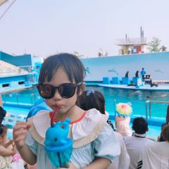 Xin'ao Marine World User Photo