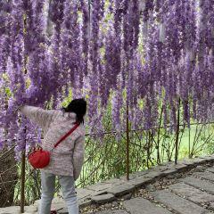 漫花荘園のユーザー投稿写真