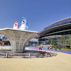 웨이까오 해양 공원 여행 사진