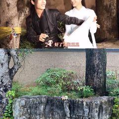 Duyun Qin and Han Studio City User Photo