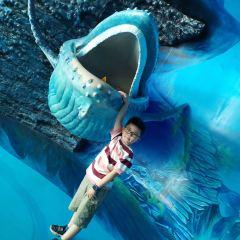 歡樂海岸海洋奇夢館用戶圖片