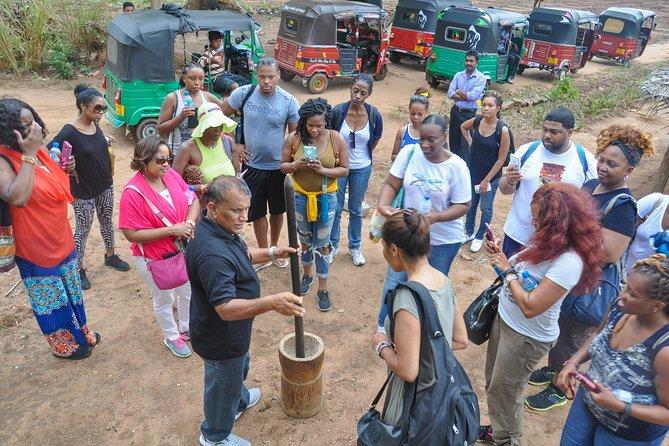 Sigiriya Ancient City and Countryside from Kandy
