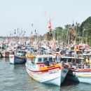 Negombo City Tour from Colombo(Private Half Day Tour)
