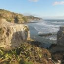 Private Tour of Muriwai Beach and Gannet Colony from Auckland