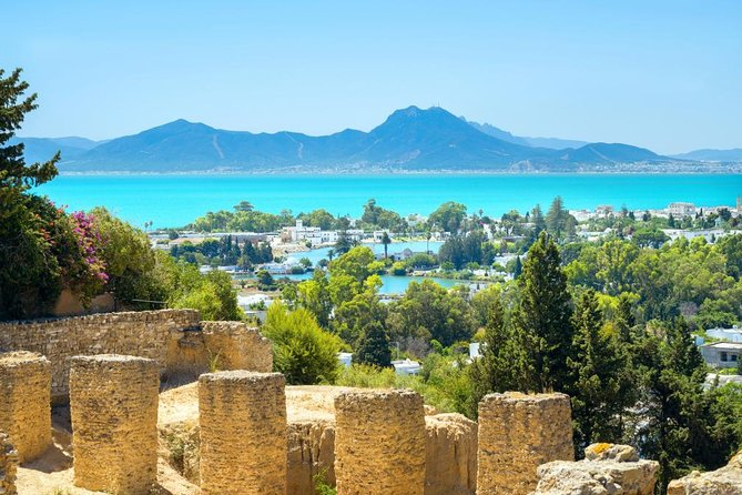 Full-Day Carthage, Sidi Bou Said, Bardo Museum & Medina Private Tour from Tunis