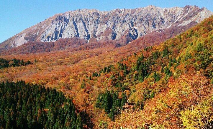 【鍵掛峠】紅葉の見頃は10月下旬~11月中旬