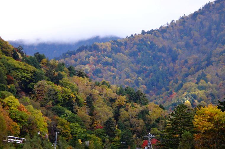 【奥飛騨温泉郷】紅葉の見頃は10月上旬~10月下旬