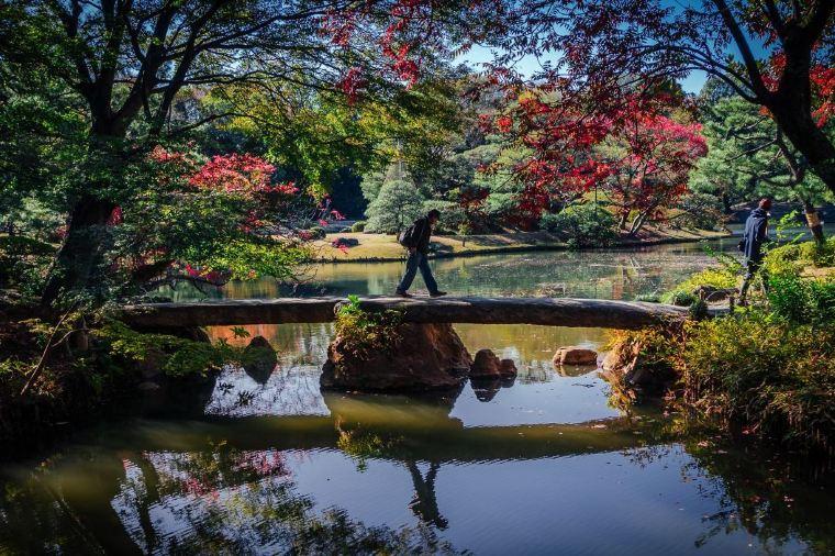 【六義園】紅葉の見頃は11月中旬~12月下旬