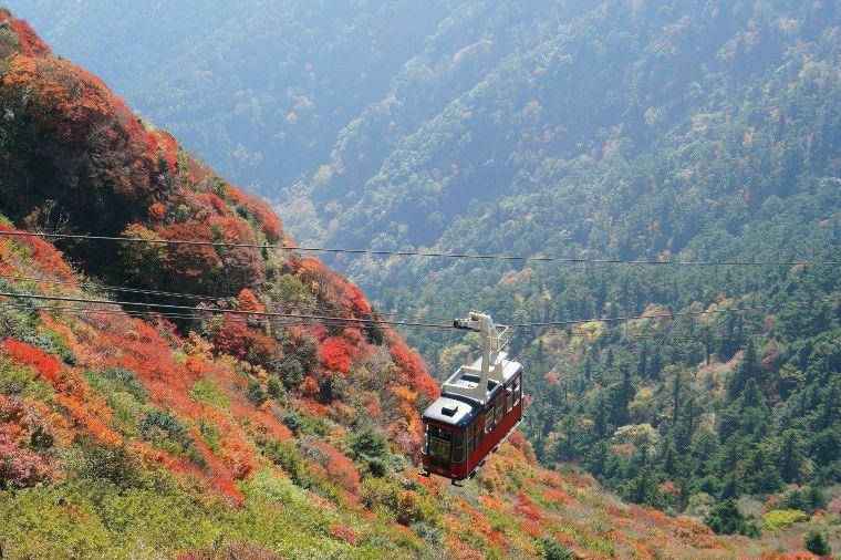 【雲仙仁田峠】紅葉の見頃は10月下旬~11月上旬