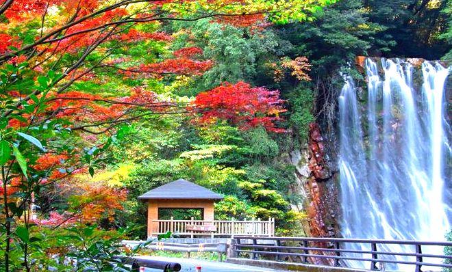 【霧島温泉郷】紅葉の見頃は10月中旬~11月中旬