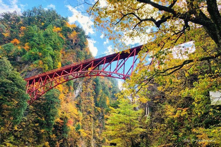 【黒部峡谷】紅葉の見頃は10月下旬~11月中旬