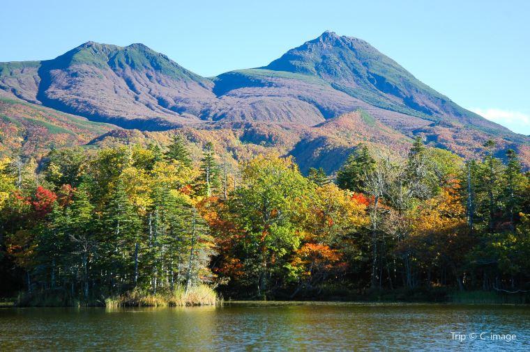 【知床五湖】紅葉見頃時期-10月上旬~10月中旬