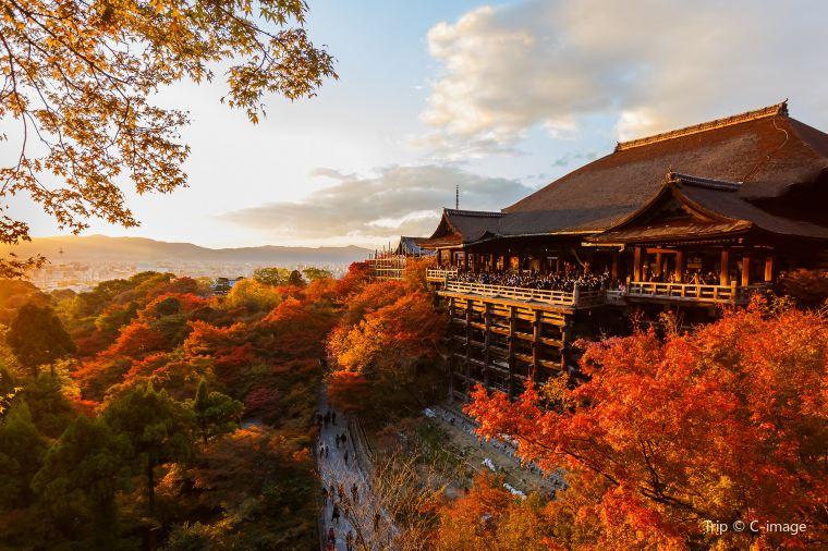 【東山(清水寺)】紅葉の見頃は11月下旬~12月上旬