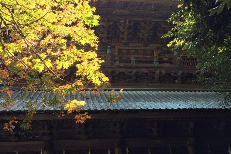 【金刀比羅宮】紅葉の見頃は10月下旬~11月下旬