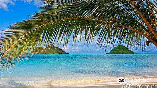 Duke Kahanamoku Beach