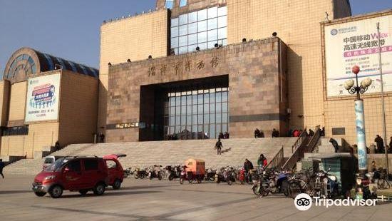 Zibo Shoucang Museum