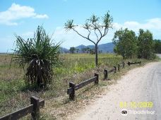 Townsville Town Common Conservation Park-汤斯维尔