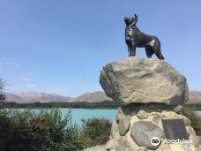 Mackenzie Sheep Dog Statue-特卡波湖