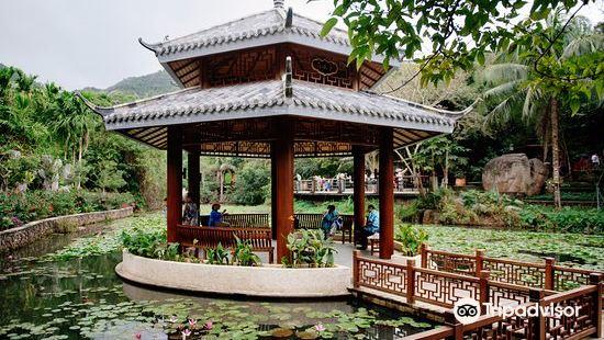 싼야 열대우림광장