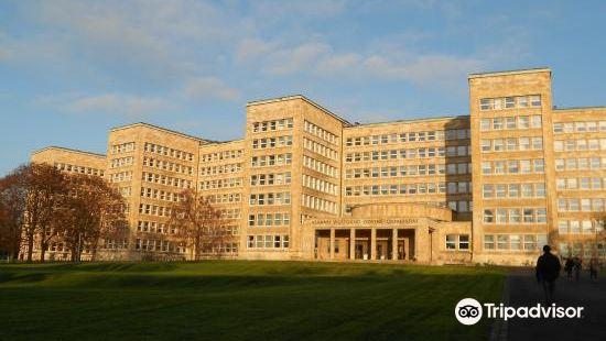 法蘭克福大學
