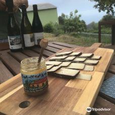 Cà du Ferrà Wine & Tasting Ca du Ferra Wine & Tasting-博纳索拉