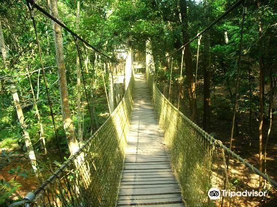 Gunung Lambak Attractions Kluang Travel Review Travel Guide Trip Com