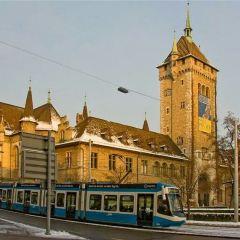Zurich User Photo