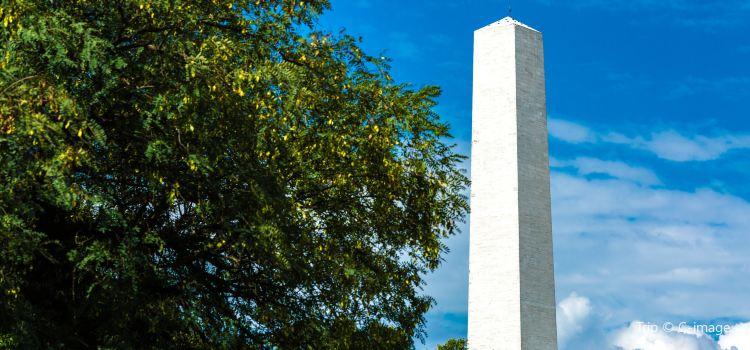 Ibirapuera Park2