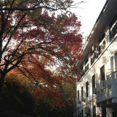 Wuhan University User Photo