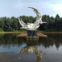 징유에 연못 여행 사진