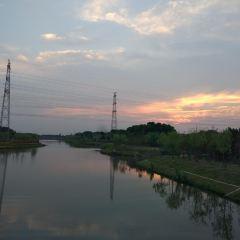 上海國際旅遊度假區生態園用戶圖片