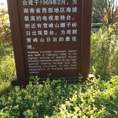 Mount Xuefeng National Forest Park User Photo
