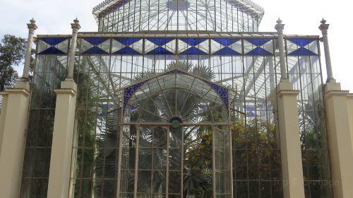 阿德萊德植物園