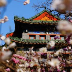 Beijing Southeastern Watchtower User Photo