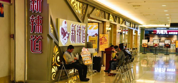 Xin La Dao Yu Hot Pot( Beijing Shangdi )