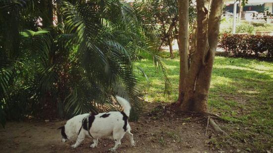 Baoyi Park