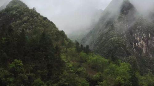 Feishui Cave