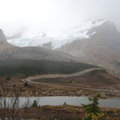 Columbia Icefield User Photo