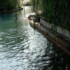 Dawenhe Guojia Chengshi Wetland Park User Photo