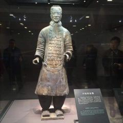 진시황 병마용 박물관 여행 사진