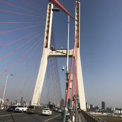 八一大橋用戶圖片